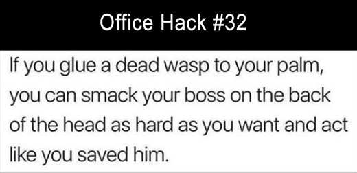office-hack-if-you-tape-a-dead-wasp-to-your-hand-can-smack-boss-as-much-as-you-want