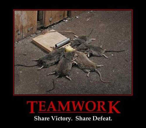 teamwork-share-victory-share-defeat-mice-trap