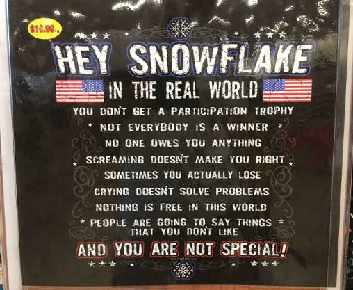 the-real-world-hey-snowflake-no-participation-trophy-you-are-not-special-screaming-doesnt-make-you-right