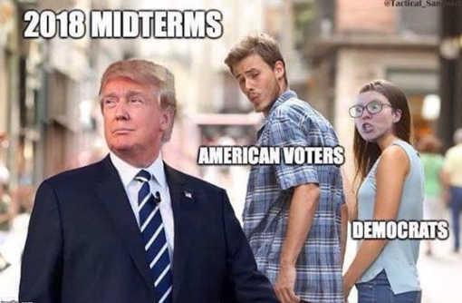 2018-midterms-trump-american-voters-democrats-crazy
