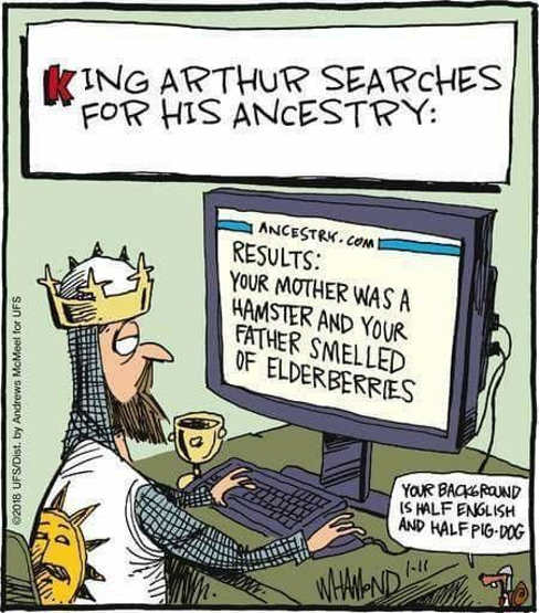 king-arthur-searches-ancestry-mother-hamster-father-smells-of-elderberries-monty-python