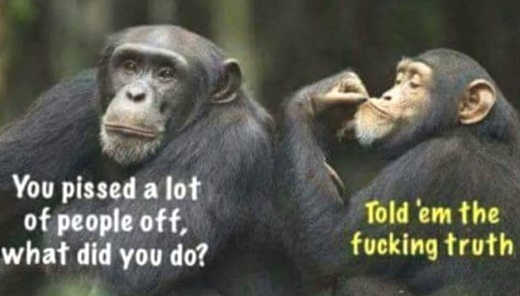 monkeys-pissed-off-lot-of-people-told-them-the-fucking-truth