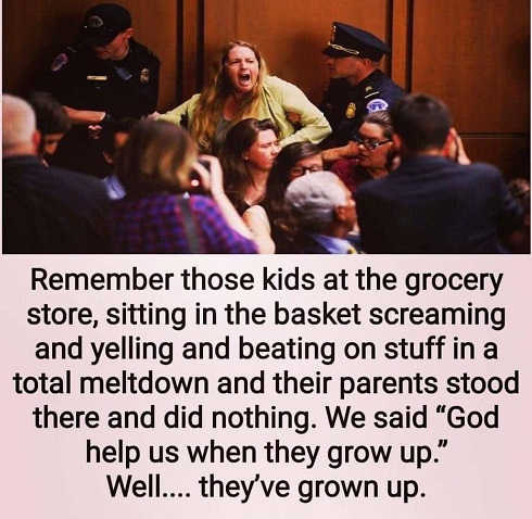 remember-kids-in-store-throwing-tantrum-parents-did-nothing-help-us-when-grow-up-protesters