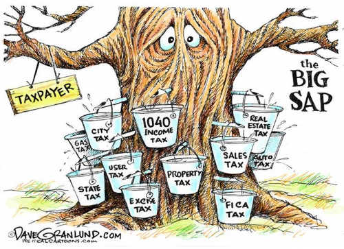 taxpayer-big-sap-state-fica-federal-user-sales-property-tax