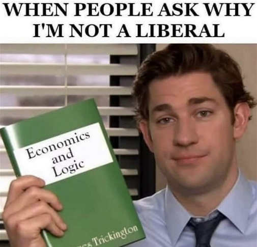when-people-ask-why-im-not-liberal-economics-and-logic-book