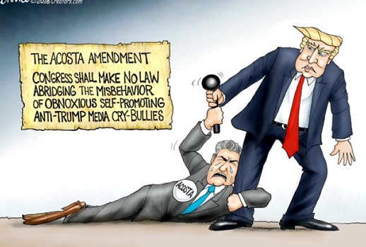 acosta-amendment-congress-make-no-law-against-obnoxious-anti-trump-cry-babies