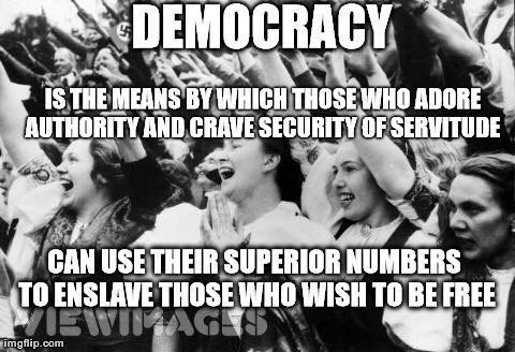 democracy-when-those-who-desire-socialism-s