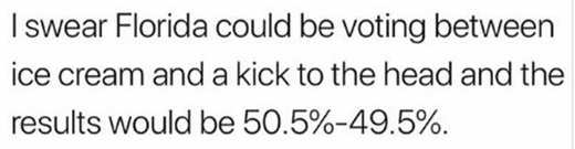 i-swear-florida-could-be-voting-between-ice-cream-and-kick-in-head-still-50-50-vote