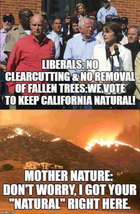 liberals-no-clearcutting-removal-of-trees-keep-california-natural-mother-nature-i-got-your-natural-right-here