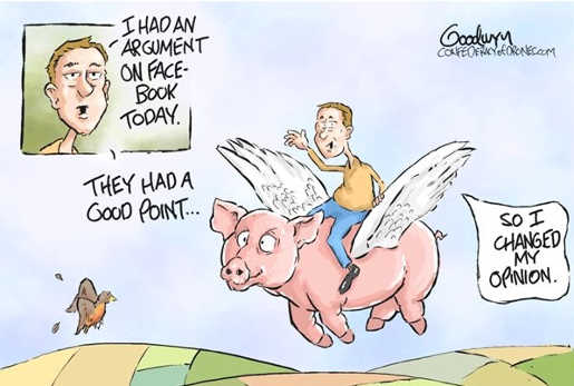 social-media-pigs-fly-argument-forced-person-to-change-mind-opinion