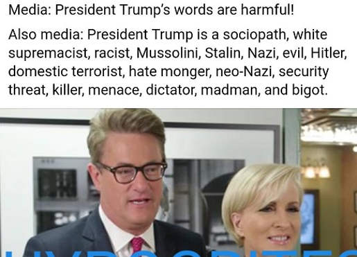 trumps-words-harmful-also-msnbc-cnn-he-is-sociopath-hitler-racist-nazi-dictator-madman-bigot-racist
