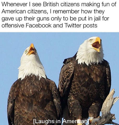 whenever british laugh at america remember how gave up guns put in jail for facebook twitter posts bald eagle