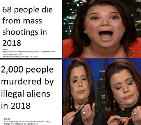 68 people die mass shooting liberals shout 2000 murdered illegal aliens file nails