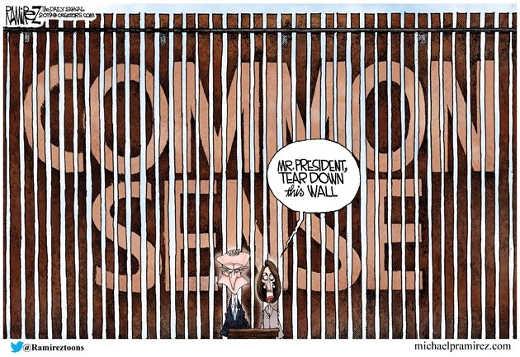chuck nancy mr president tear down this wall of common sense