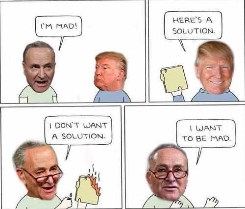 chuck schumer im mad trump heres solution