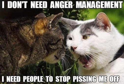 i dont need anger management need people to stop pissing me off