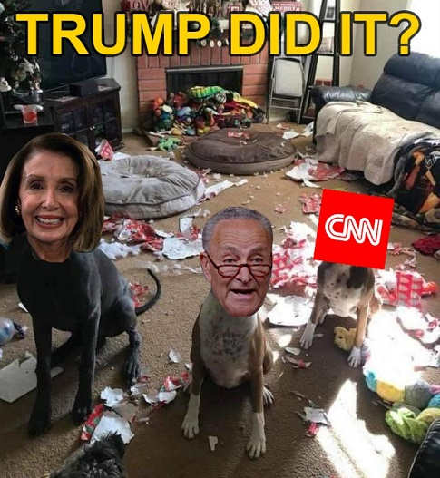 nancy pelosi chuck schumer cnn trashed living room trump did it