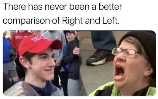 never been better comparison between left and right maga hat boy screaming liberal