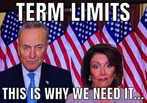 term limits this is why we need them nancy pelosi chuck schumer