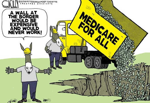 wall is expense and would never work medicare for all dumping cash