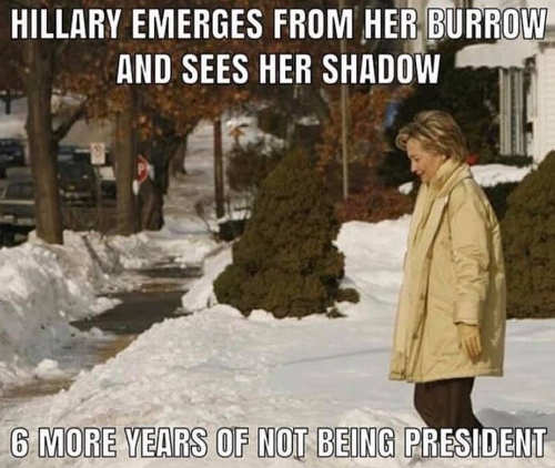 hillary emerges from her burrow sees shadow 6 more years of not being president