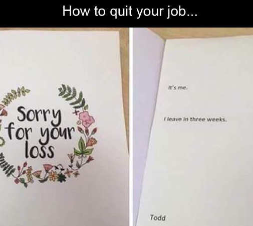 how to quit your job sorry for you loss greeting card