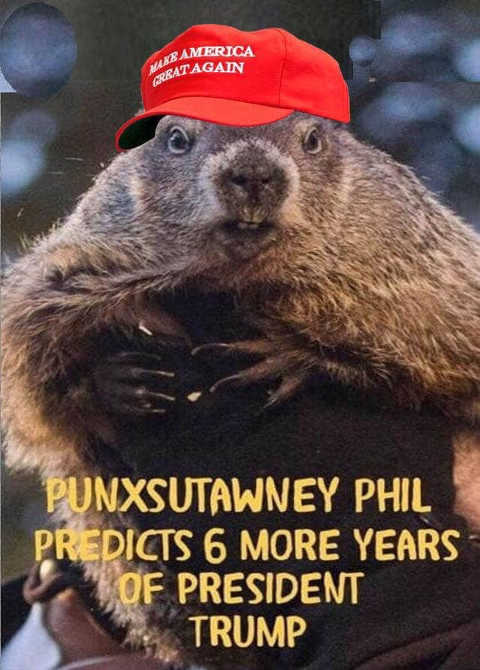 punxsutawney phil predicts 6 more years of president trump maga hat groundhog