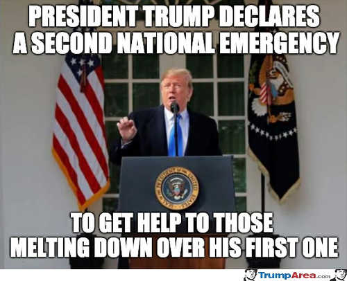 trump declares 2nd national emergency to help those melting down over first one