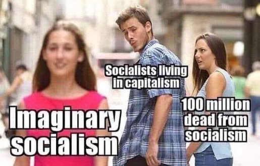imaginary socialism socialist in capitalist country 100 million dead