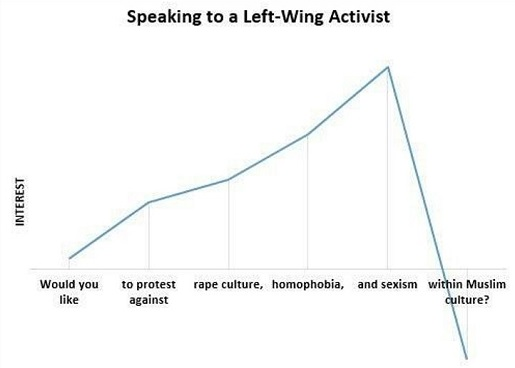 speaking to left wing activist protest against rape homophobia sexism within muslim culture graph