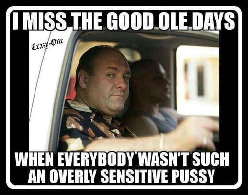 tony soprano miss the goold ole days when everybody not overly sensitive pussy