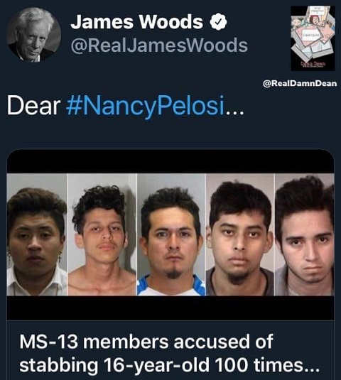 tweet james woods dear nancy pelosi ms13 accussed of stabbing 16 year old 100 times