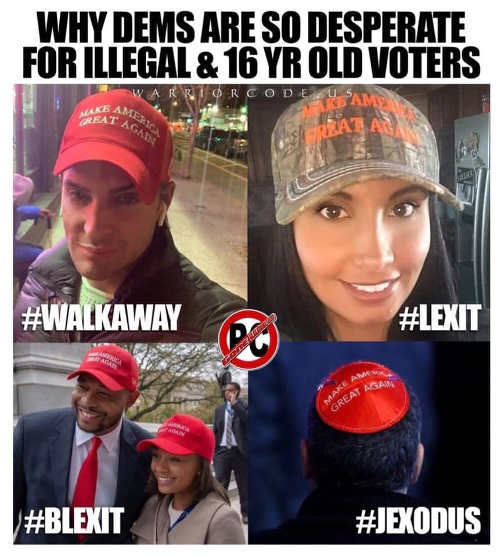 why democrats are desperate for illegals 16 year old votes jexodus blexit