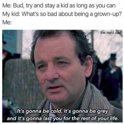 bill murray stay kid adult cold gray like that rest of your life