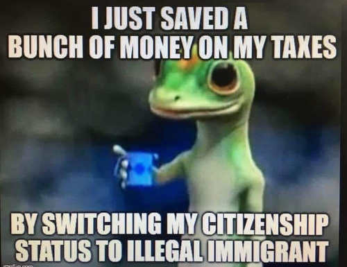 geico i just saved bunch of money on taxes by switching citizenship to illegal immigrant