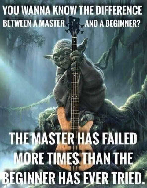 quote difference master and beginner master has failed more times than beginner tried