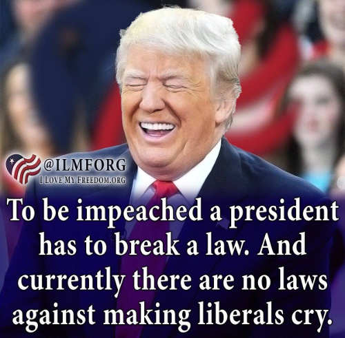 trump to be impeached president has to break law nothing against making liberals crty