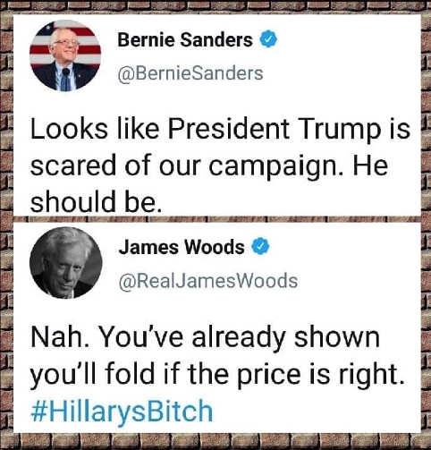 tweet james woods bernie sanders shown fold if price right hillarys bitch
