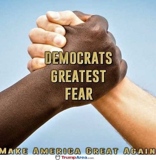 democrats greatest fear black and white getting together
