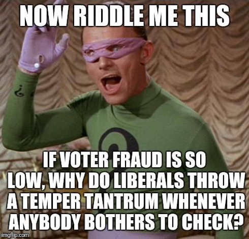 riddle me this if voter fraud so low why do liberals throw temper tantrum when check