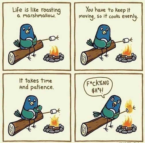life is like roasting marshmallows time patience burns