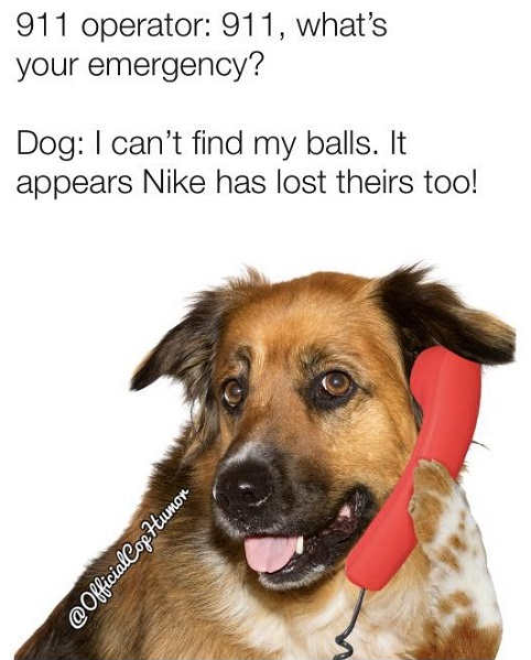 911 whats your emergency dog lost my balls nike has too