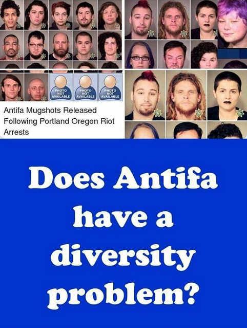 antifa mugshots portland riot all white diversity