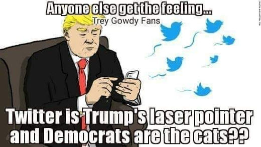 anyone else get feeling twitter is trumps laser point democrats are the cats