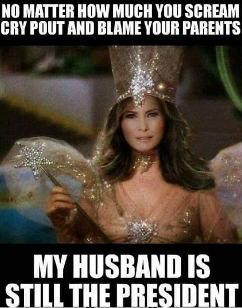 melanie trump fairy no matter how much scream cry husband still your president
