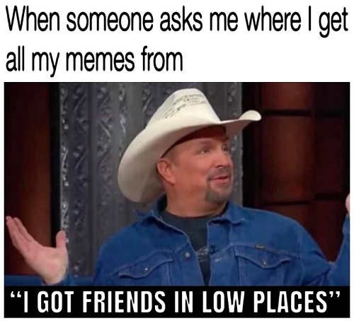 when someone asks me where i get my memes from i got friends in low places