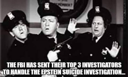 fbi has sent their top 3 investigators to handle epstein suicide investigation