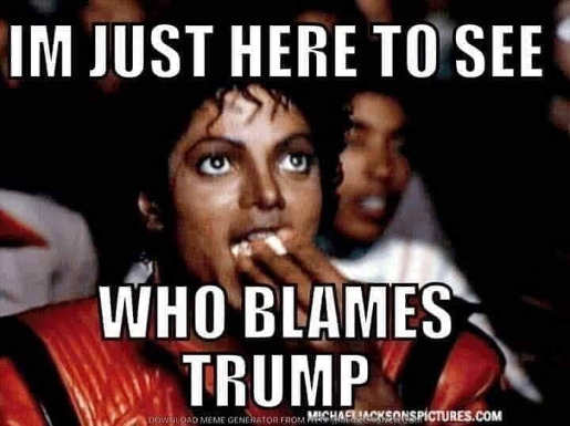 michael im just here to see who blames trump
