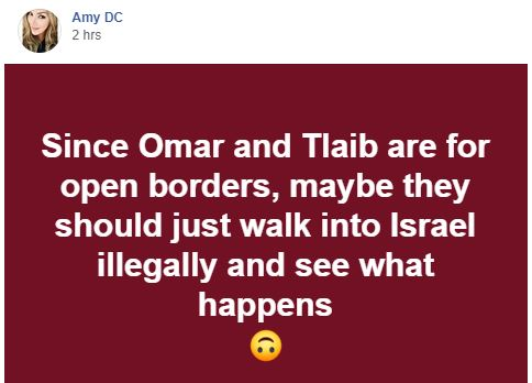 quote since tlaib omar for open borders maybe they should walk into israel see what happens