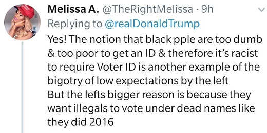 tweet melissa a notion black people too dumb to get id racist bigotry low expectations